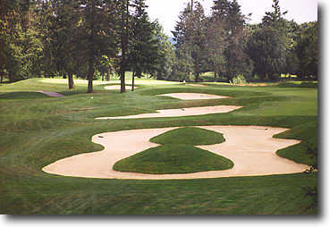 Ghost Creek @ Pumpkin Ridge #7: Right center is the best place to be on this one. Fairway bunkers line the left side and a group of pines guards the left front of the green. Ghost Creek is just off the green on the right side so be careful with your appro