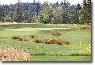 Ghost Creek @ Pumpkin Ridge #11: Another great par 3. Ghost Creek meanders across the front and along the right all the way past the green