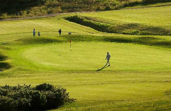 A sunny view of a green at Houghwood Golf Club