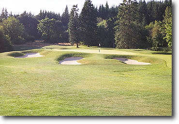 Ghost Creek @ Pumpkin Ridge #16: The photo was taken from a hillside to the left to show the hazards waiting on both sides. There are seven bunkers guarding this small green but the hole is short. A birdie is a definite possibility.
