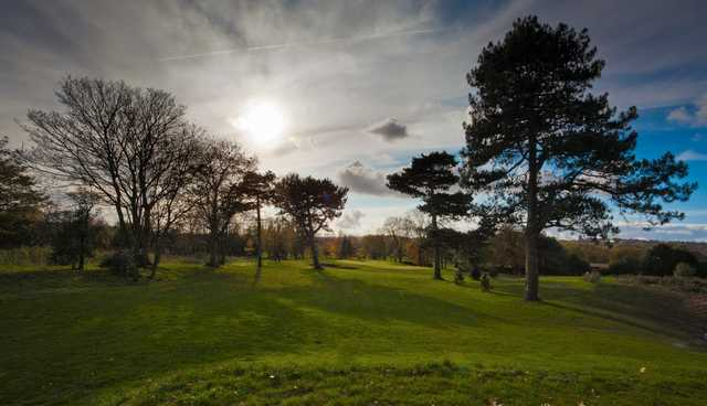 Scenic view of the 10th hole and surrounding trees at Lee Park Golf Club.