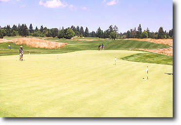 The practice green is beautifully manicured and large enough to accommodate several golfers.