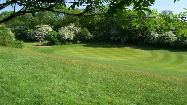 A spring view of a green at Kirkbymoorside Golf Course