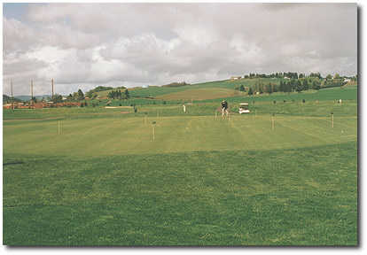 Quail Valley Putting Green: Beautifully manicured and chipping is allowed.