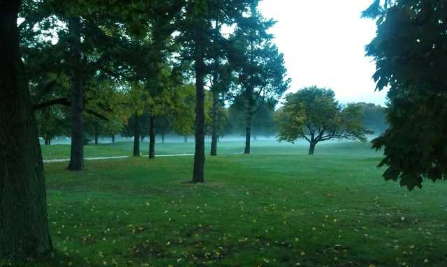 Foggy day at Triggs Memorial Golf Course