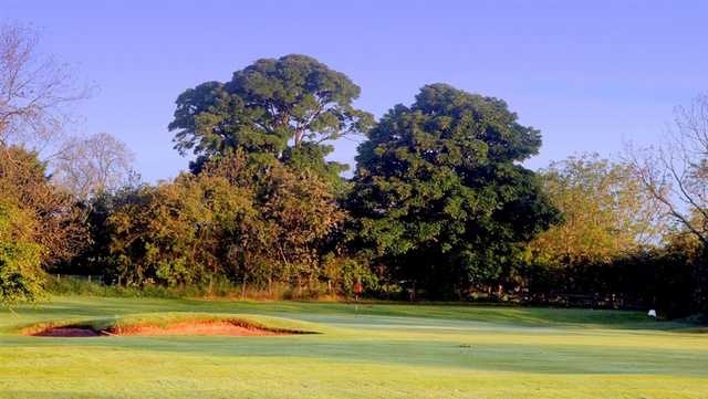 A sunny view of a green at Ponteland Golf Club