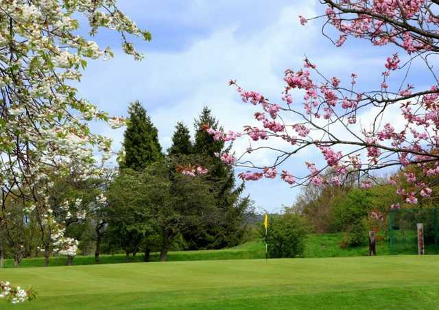 A spring view of a green at Prudhoe Golf Club