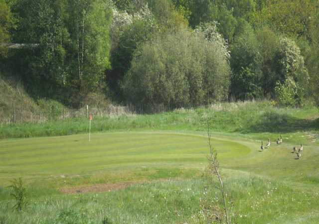 A view of green #13 at Leen Valley Golf Club