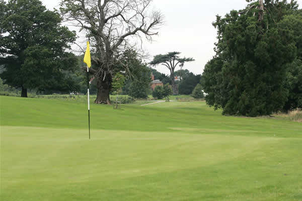 A view of hole #8 at Westwood Course from Norwood Park Golf Centre