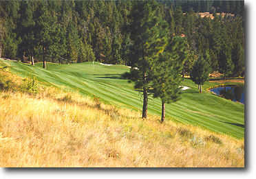 River's Edge #16: Possibly the most memorable golf shot in Central Oregon! Elevation change allows for a two club drop in club selection. This hole has it all, water, sand, trees, rough and a beautiful view.