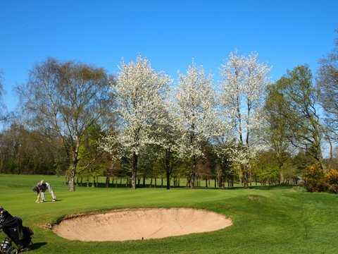 A view of green #11 guarded by blossom trees at Henley Golf Club