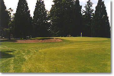 Rose City #1: One fairway bunker on the right about 200 yards out and trees down the left await your first tee shot. The green has one large bunker on the left.