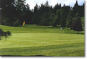 Rose City #17: From the back of the green. A fairway that severely slants left and leads to an another elevated green.