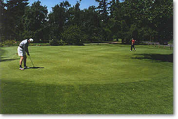 Beautifully manicured and chipping is allowed on the north end of the green only.