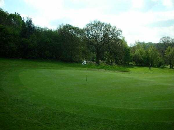A view of green #5 at Hickleton Golf Club