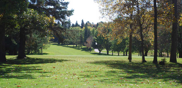 View of a green at Whitetail Run Golf Course