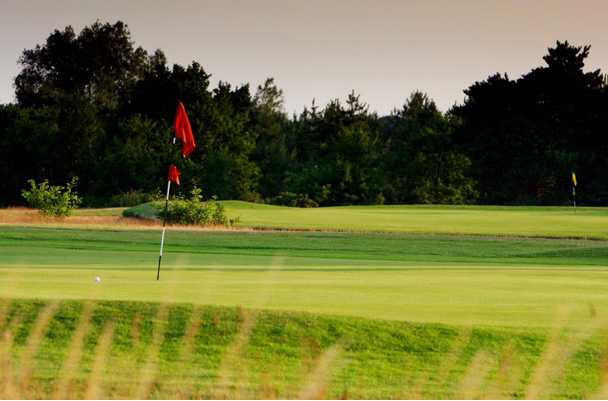 A view of a green at Bungay & Waveney Golf Club