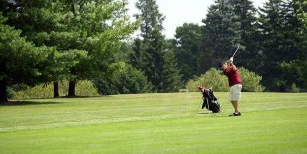 A view from Huron Meadows Metropark Golf Course