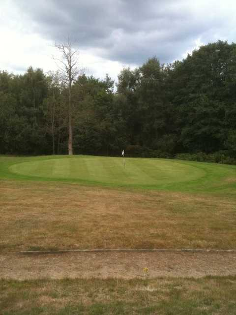 A view of the 14th green at Chiddingfold Golf Club