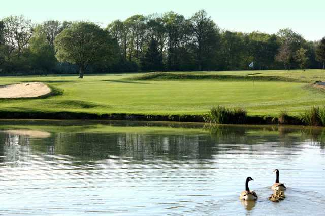 A view over the pond of a green at Gatton Manor Hotel Golf & Country Club