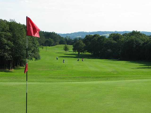 A view from green #16 at Leatherhead Golf Club