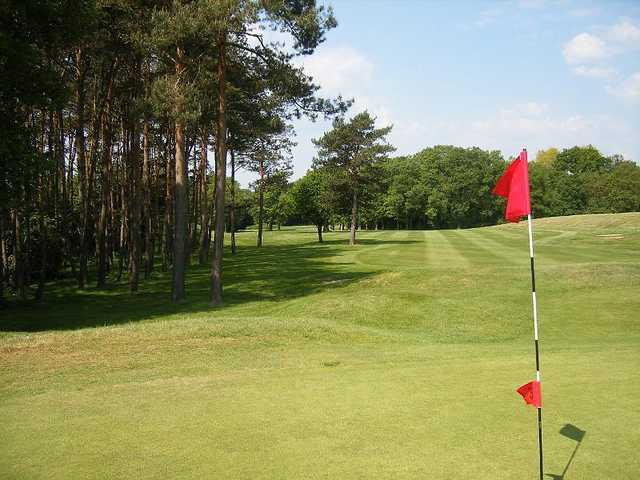 A view from the 14th green at Leatherhead Golf Club