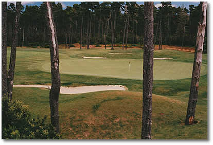 Florence Golf Links #9: A long par 4 protected left and right by pine trees. The green is guarded by bunkers to the left, right and rear.