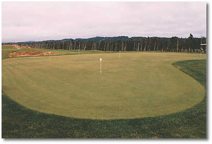 The putting green is large, flat and well manicured. It also provides a beautiful view of the course.