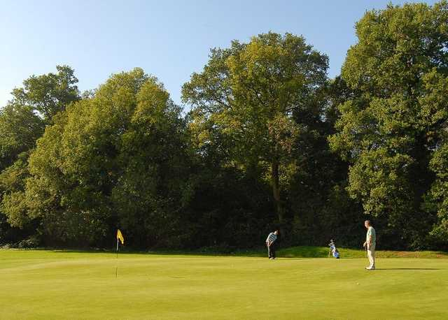 A sunny view of a green Horsham Golf Club.