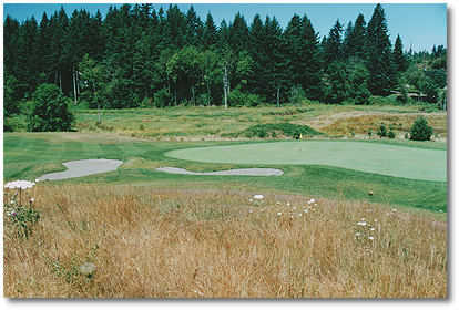 #12: Spectacular risk/reward hole with wetlands on the left side of fairways. In the summer, hit with a 3 wood or long iron, and in the winter go with a driver. Stay to the right side to get the best approach shot. The green has a lot of movement with a b
