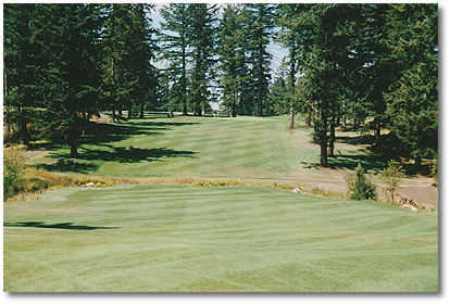 #13: Most difficult hole on backside. There's a blind tee shot over a hill, so you can't see the ball land. Fairway is guarded on left by creek about 300 yards off the tee. 2nd shot is uphill - about 185 yards to a green that is surrounded by large Dougla