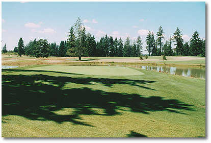 #17: The toughest driving hole. Left and right feature heavy Douglas firs, so accuracy is most important. 2nd shot is intimidating. Hit a middle to long iron to a flat green that sits out in the middle of a pond. There's water on the right and long, so ma