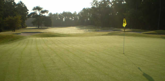 View of a green at Longwood Golf Club.