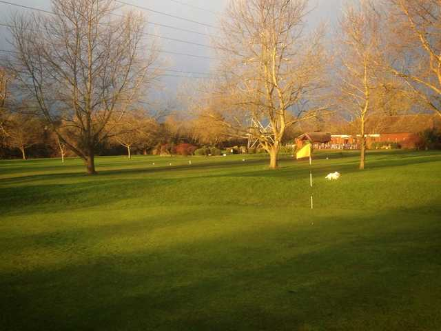 A view of a green at Whitley Golf Club