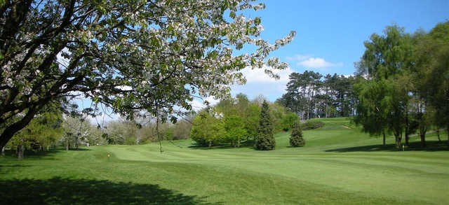 A view of a fairway guarded by spring blossom trees at Droitwich Golf & Country Club.