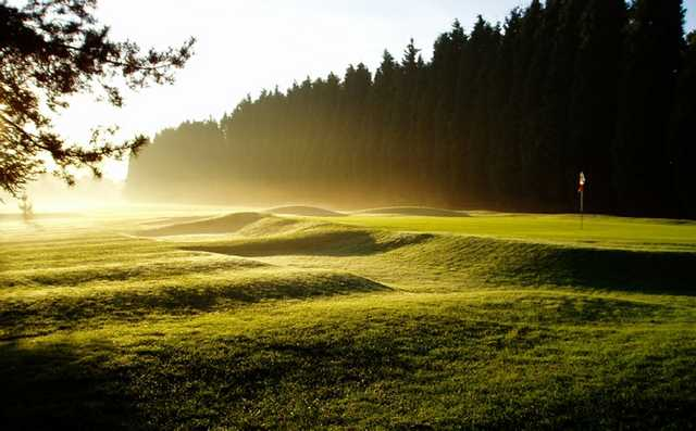A sunny view of a green at Hollywood Golf Club