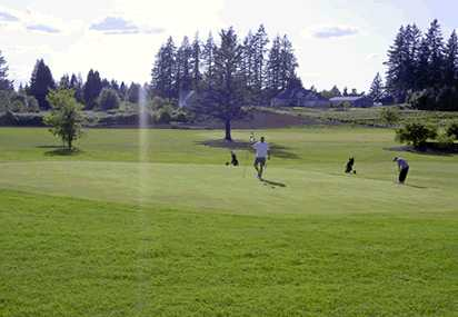 A view of green #8 at Greenlea Golf Course