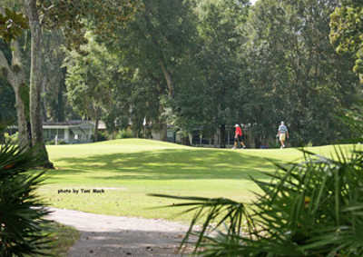 A sunny view from Continental Country Club