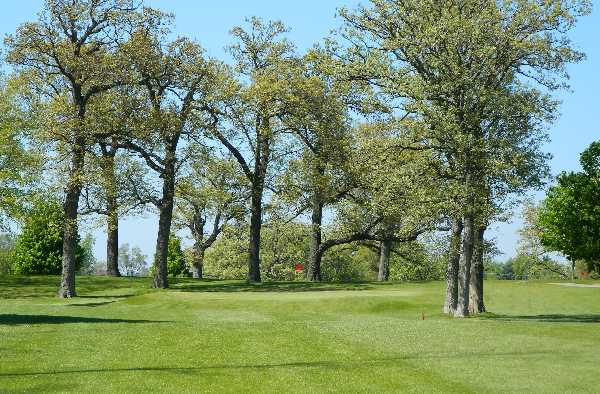 A view of a green from Oak Springs Golf Course