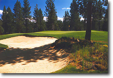 Widgi Creek #12: Hole #12 is a dogleg left with thick trees lining both sides of the fairway all the way to the green. One bunker to the right front guards the green.