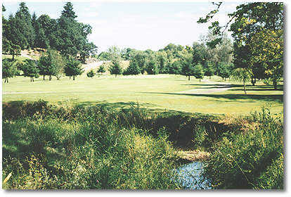 Hole #7 is a slight dogleg right with a creek cutting across the fairway on your second shot. Watch your distance. You may want to lay up on your second shot and take an easy iron shot to the green.