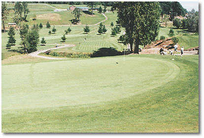 Hole #8: Selecting the correct club is the difficulty on this hole. It's only 105 yards but almost straight up and a creek cuts across the fairway. Too much club will leave you with a down hill chip shot to a green that slants from back to front. Not enou