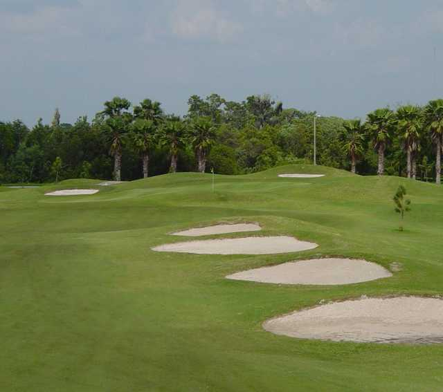 A view of a green protected by bunkers at Summerfield Crossings Golf Club