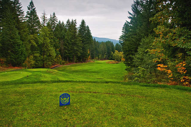 Skamania Lodge #12: A course signature hole. Ideal tee shot is around, over, under or through the clump of maple trees and down the hill. Don't get too greedy on your approach shot as this green is heavily guarded by Lilly Pad Lake on the right.