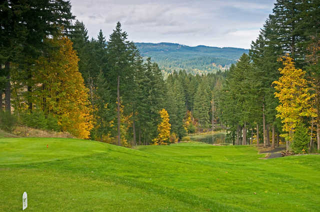"Skamania Lodge #14: This hole has been named the ""waterfall"" and as you might expect, it is steep! Either lay up on top of the hill 150 yards from the green, or knock it down the hill with a long iron or wood, leaving a short approach shot. Beware of the"