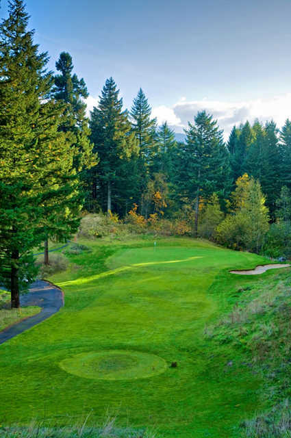 Skamania Lodge #6: Swirling winds can make this deceptively easy looking hole a bear. Club selection is very important, as you'll notice it's quite a drop from the tee. All in all, a shot that lands on the green is really very good!