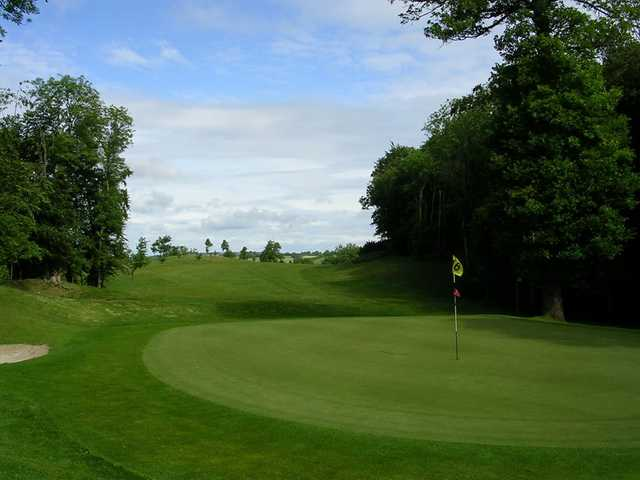 A view of green #16 at Ardee Golf Club