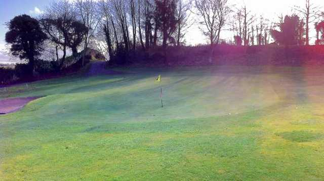 A view of green #16 at Nenagh Golf Club