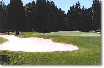 Lewis River #12: Photo from the left front of the green
