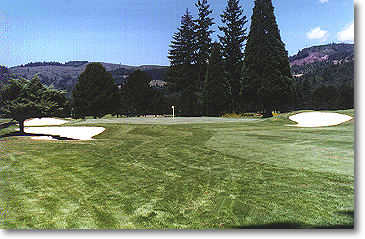 Lewis River #13: If you have the tendency to hit the ball to the right, you may have to contend with an extremely intimidating fairway bunker. You will be faced with three more bunkers that surround the right and left of the green on your approach shot.